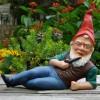 Gnomes on Redbull